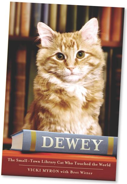 book Dewey cat